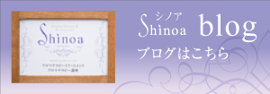Shinoa blog シノアブログはこちら